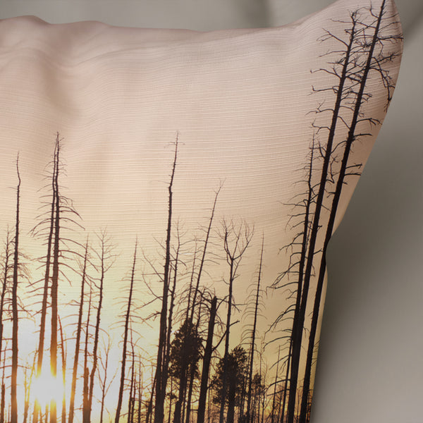 Arizona Sunset Decorative Throw Pillow Cover- 5 Sizes