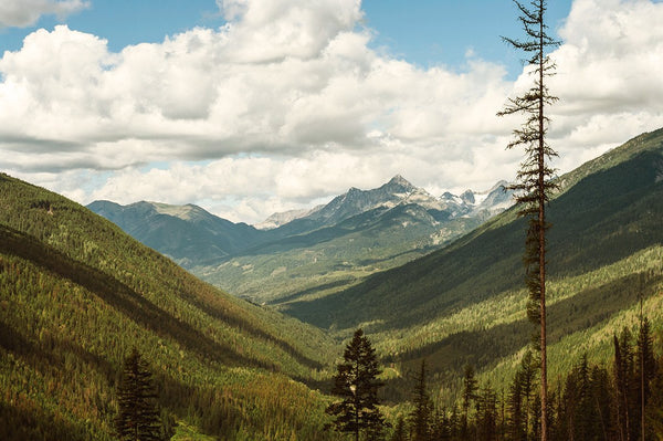 British Columbia, Slocan Mountains, Canada, Fine Art Print Lost Kat Photography