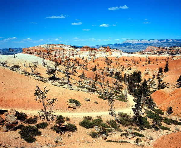 Bryce Canyon, Utah Nature Photography - Fine Art Print Lost Kat Photography