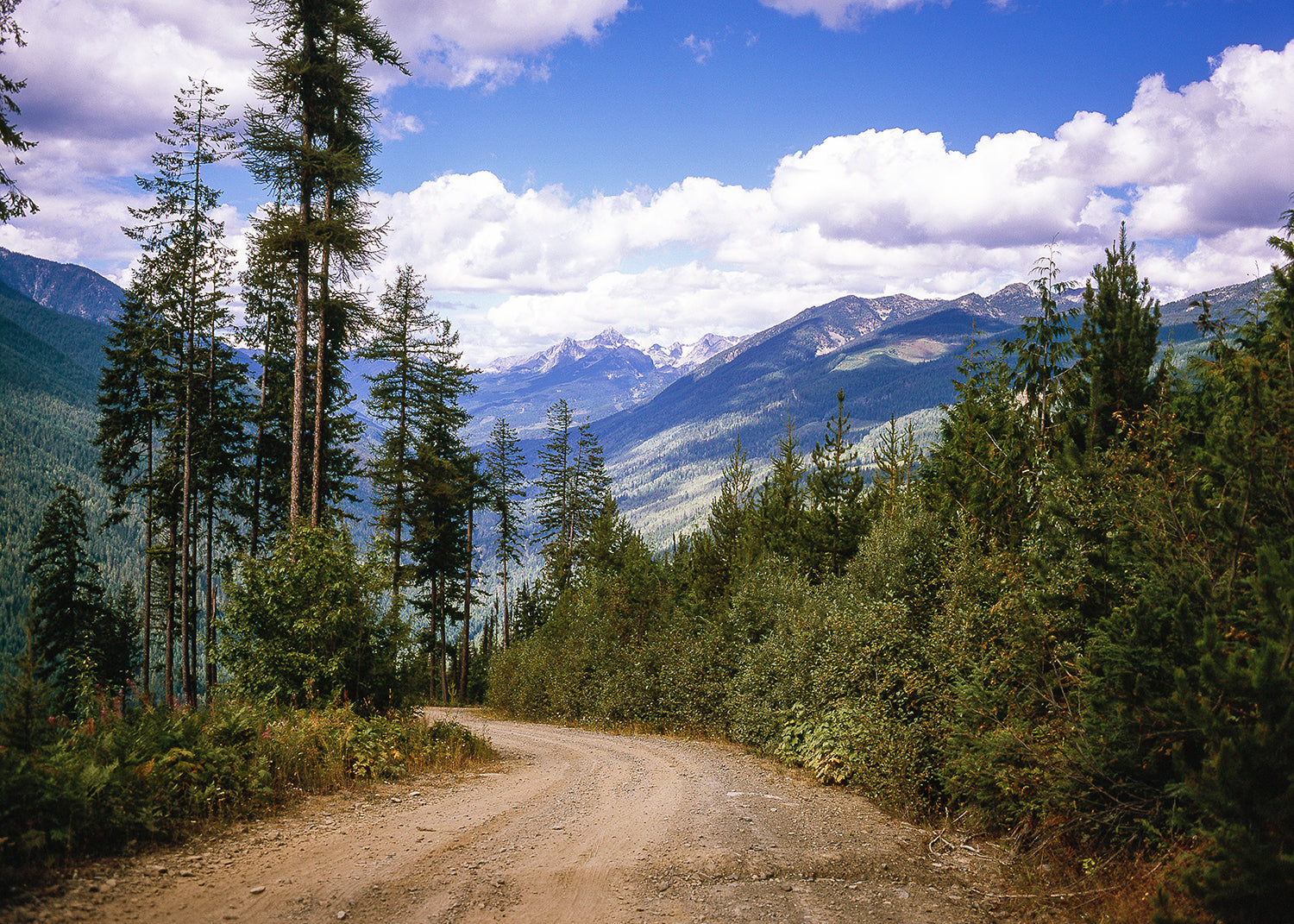 Lookout Road, Selkirk Mountains Photo Print