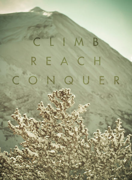Climb, Reach, Conquer - Inspirational Quote Poster Lost Kat Photography