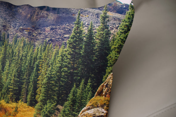 Colorado Autumn Colors Throw Pillow Lost In Nature