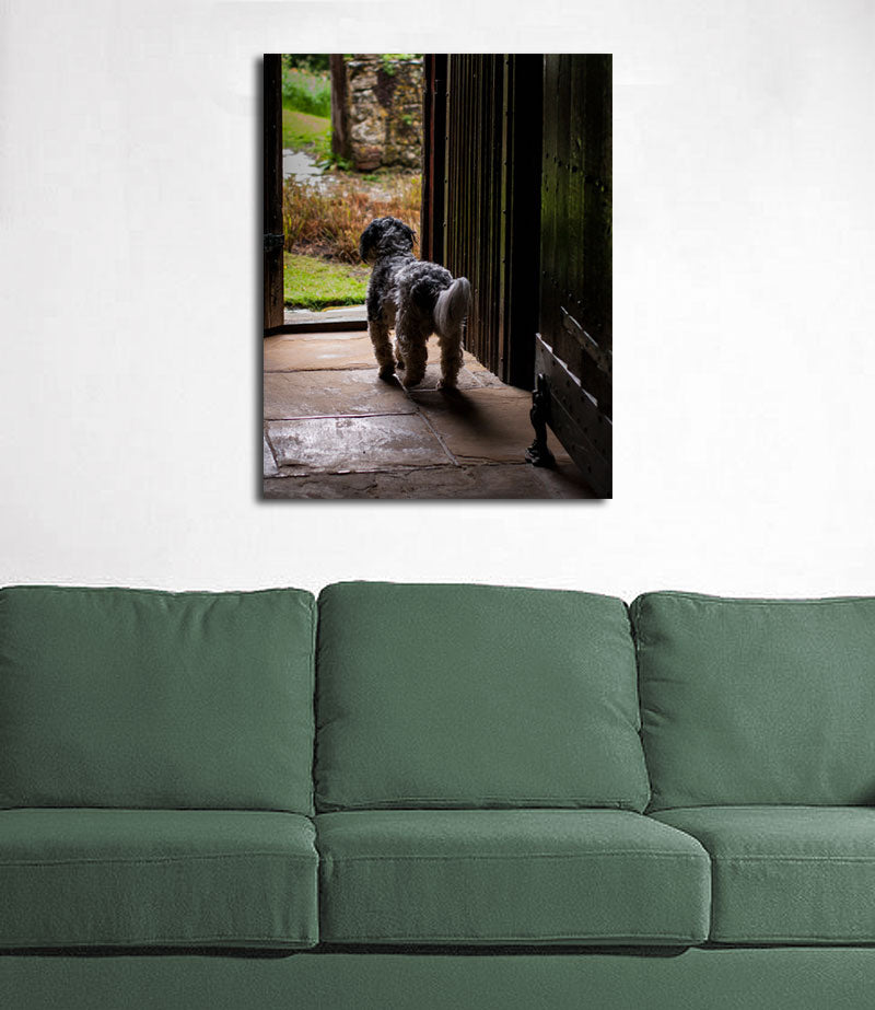 Dog in the Garden Kent, UK Wall Art Print