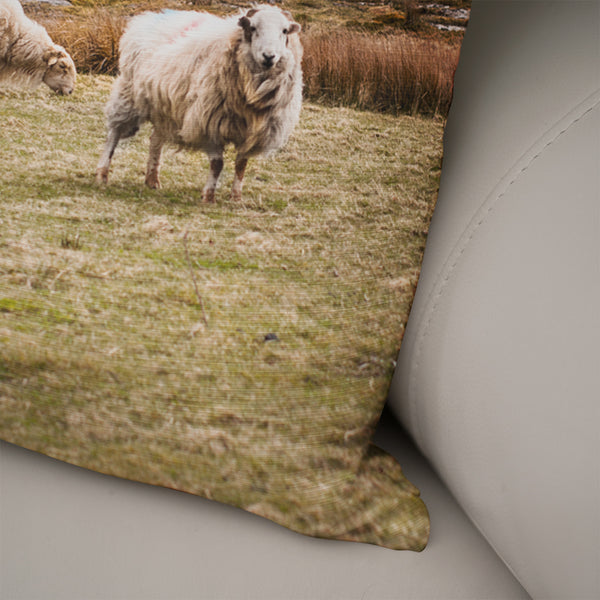 Sheep in Wales Decorative Throw Pillow Cover- 5 Sizes