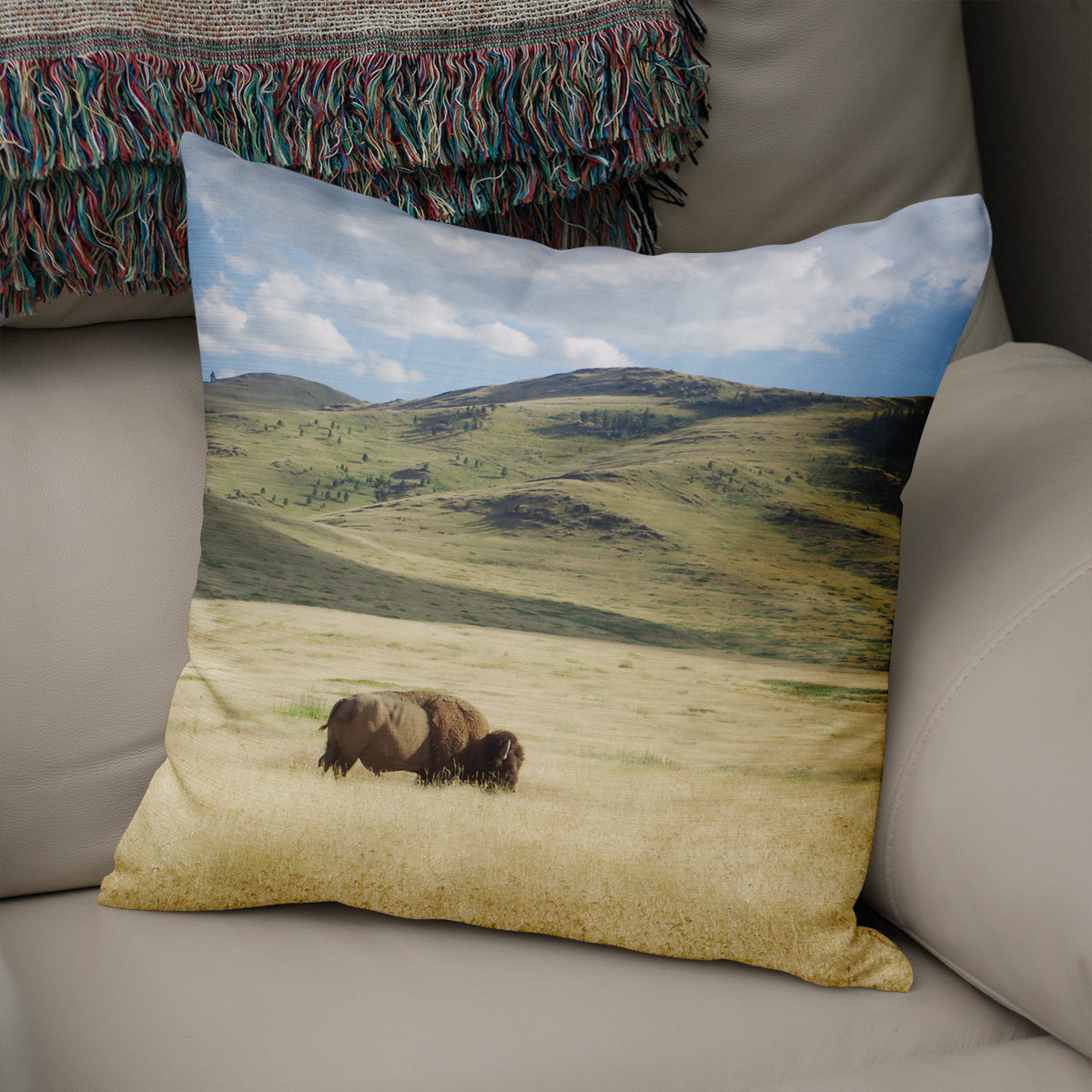 Bison on the Range, Montana Throw Pillow - 5 Sizes