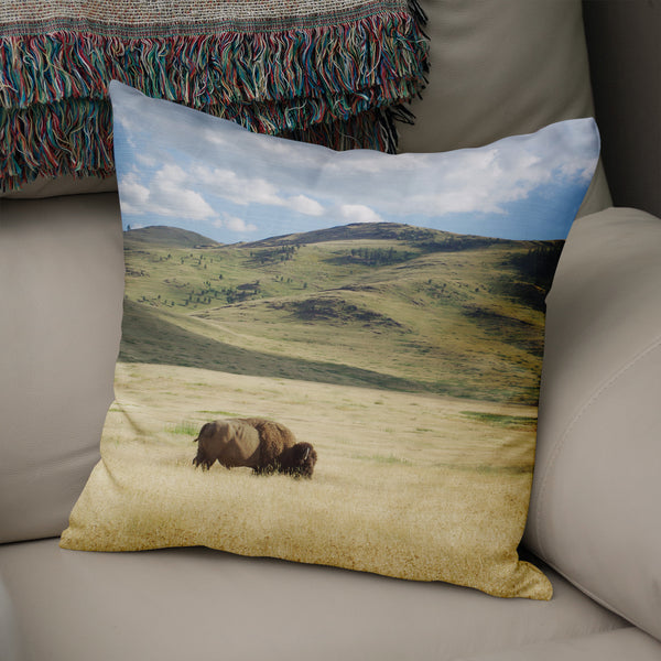 Bison on the Range, Montana Throw Pillow Cover- 5 Sizes