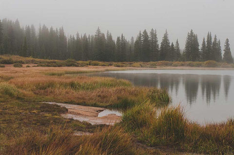 Foggy Lake, Colorado Lost Kat Photography