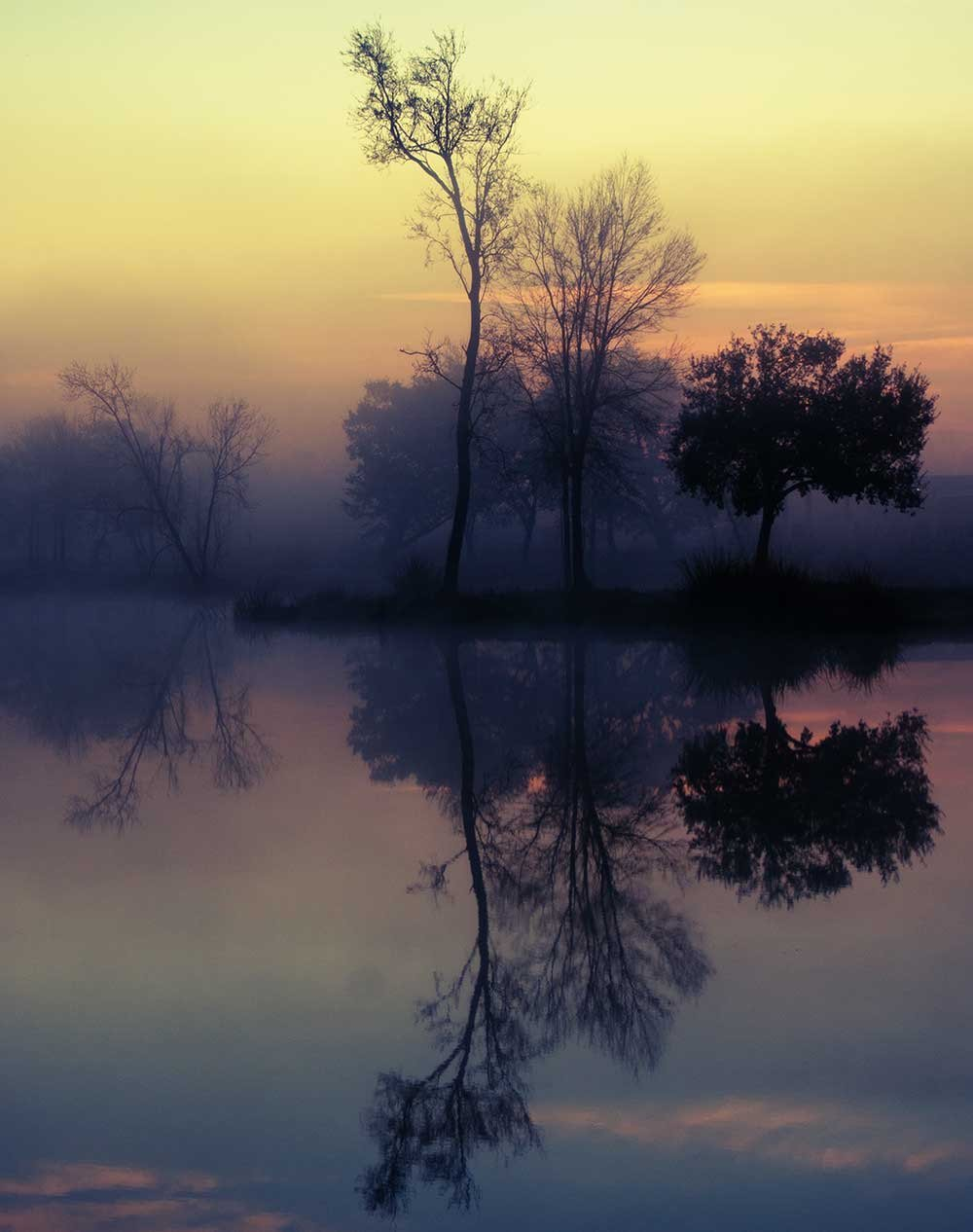 Foggy Lake Sunrise, Nature Photography Lost Kat Photography
