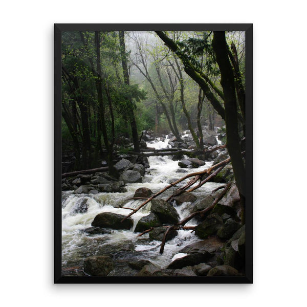 Foggy Mountain Forest - Framed Photo Print 8×10 Lost Kat Photography