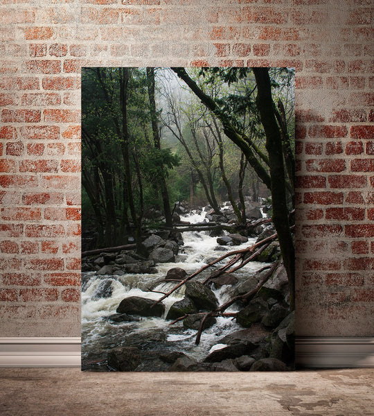 Foggy Mountains Forest, Yosemite, California Fine Art Print Lost Kat Photography