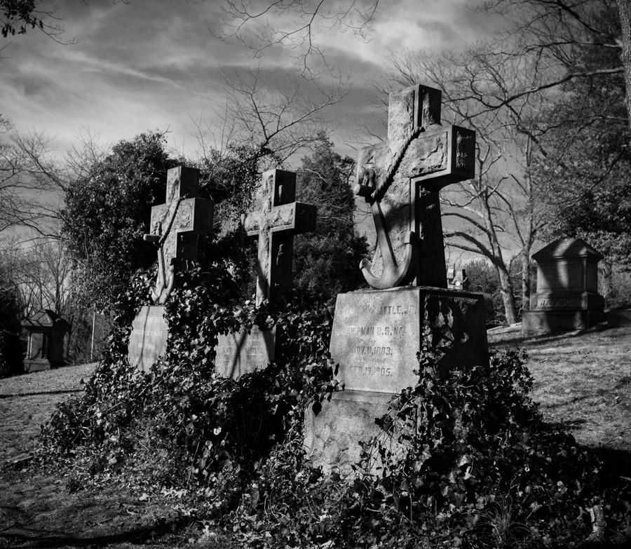 Headstones and Vines Fine Art Print, Asheville Lost Kat Photography