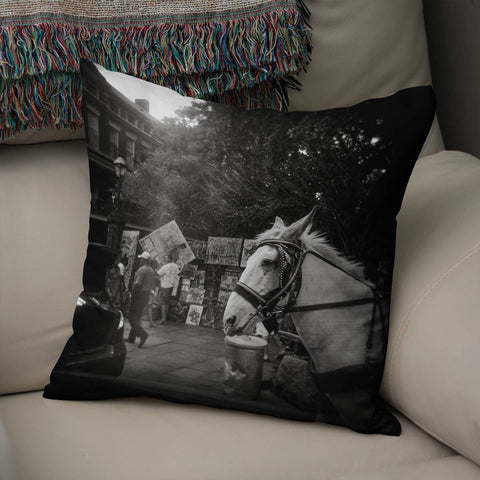 Jackson Qquare New Orleans Throw Pillow Cover Lost in Nature