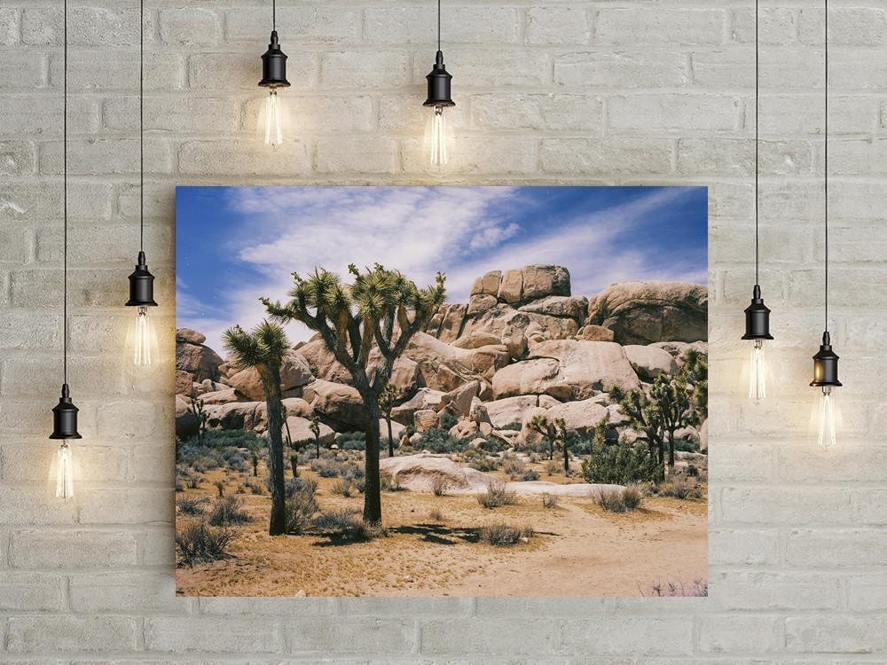 Joshua Tree, Southern California Fine Art Print Lost Kat Photography