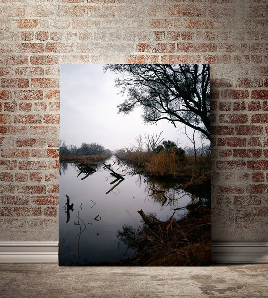 Louisiana Swamp Reflections, Fine Art Photography Lost Kat Photography