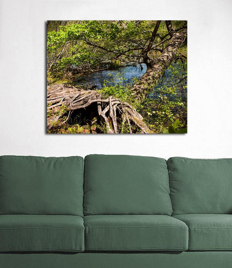Mississippi Tree Roots Fine Art Print Lost Kat Photography