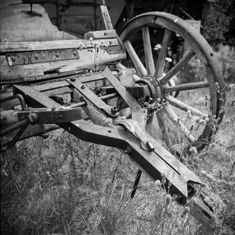 Horse Drawn Farm Equipment Fine Art Photo