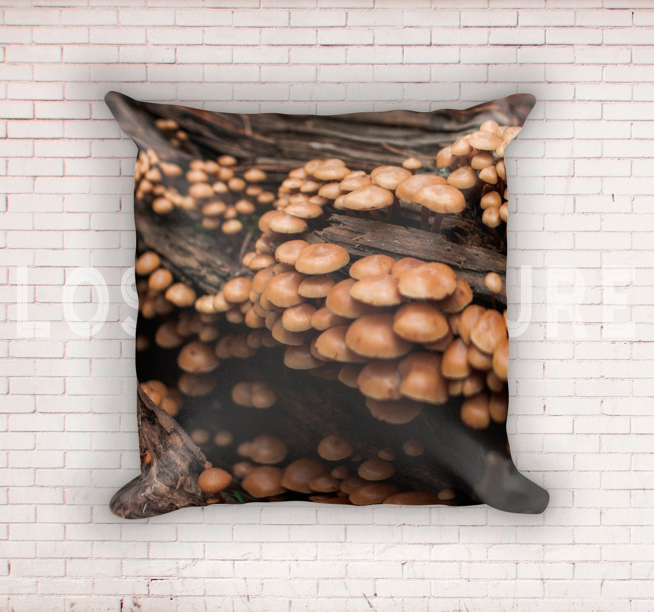 Mushroom Cluster on Redwood Throw Pillow Cover Lost in Nature