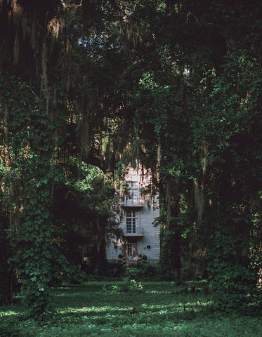 Mystery House, Louisiana