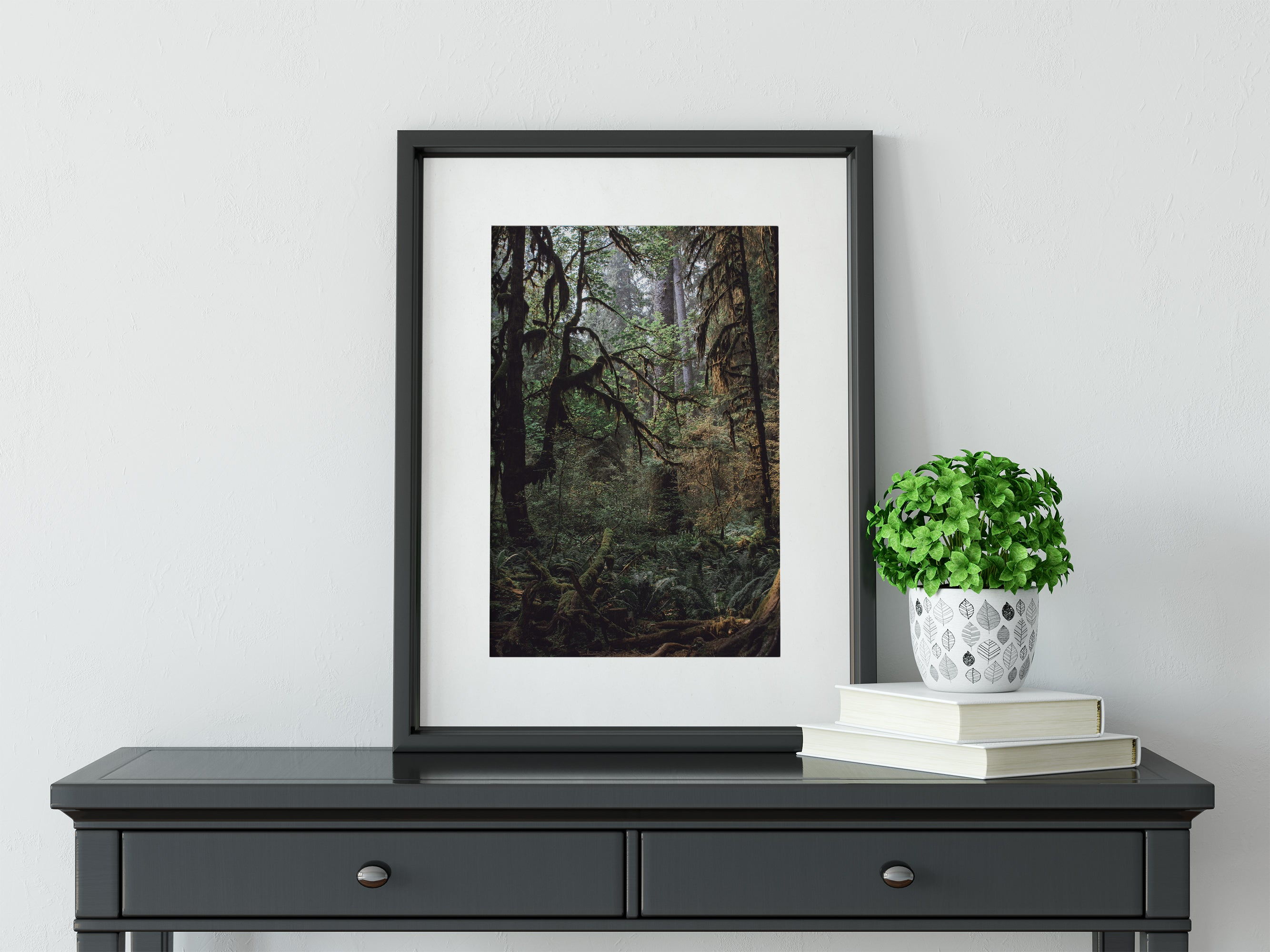 Mysterious Forest, Olympic Peninsula Wall Art Print