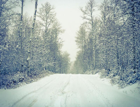 Peaceful Winter Road, Colorado Photography Lost Kat Photography