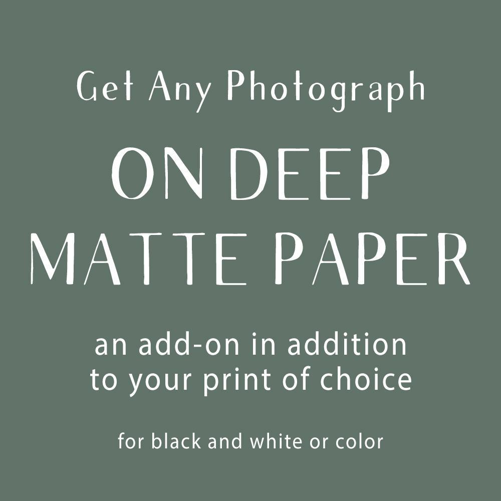 Photograph Add-On, Deep Matte Paper Lost Kat Photography