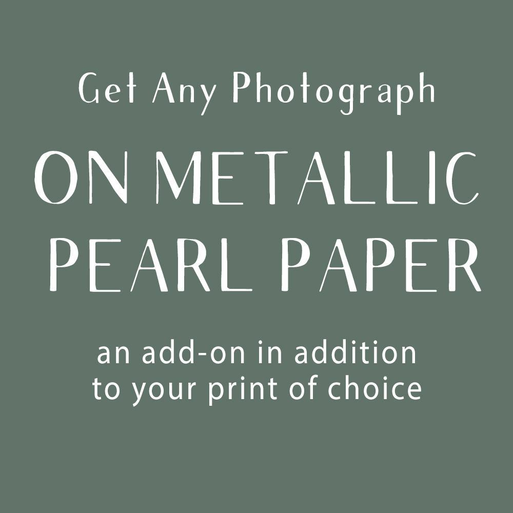 Photograph Add-On, Metallic/Pearl Paper Lost Kat Photography