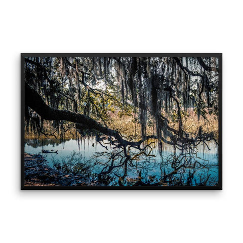 Reaching for Life - Framed Photo Print 12×16 Lost Kat Photography