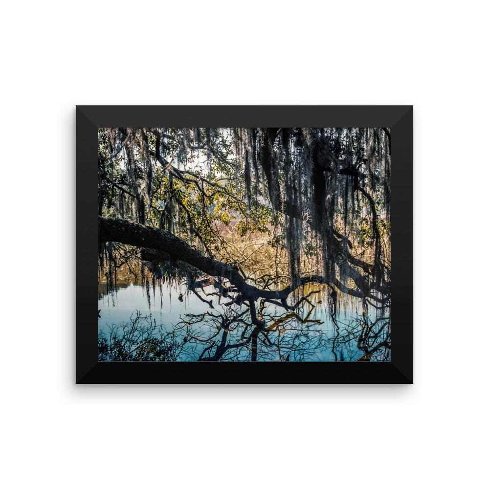 Reaching for Life - Framed Photo Print 8×10 Lost Kat Photography