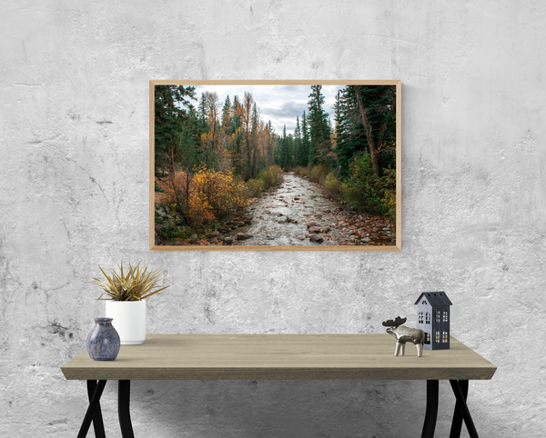 Colorado River in Autumn Wall Art Print - Many Sizes