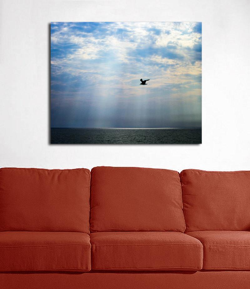 Seagull After the Storm Fine Art Print Lost Kat Photography