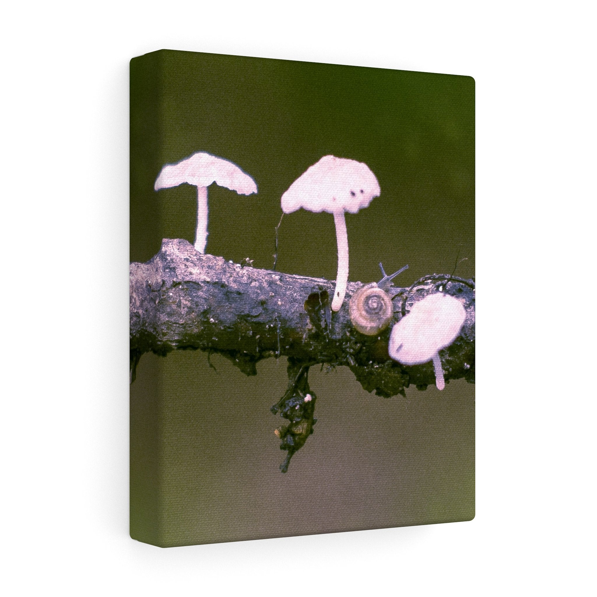 Snail on a Log Stretched canvas 8″ × 10″ / Stretched Canvas (1.5