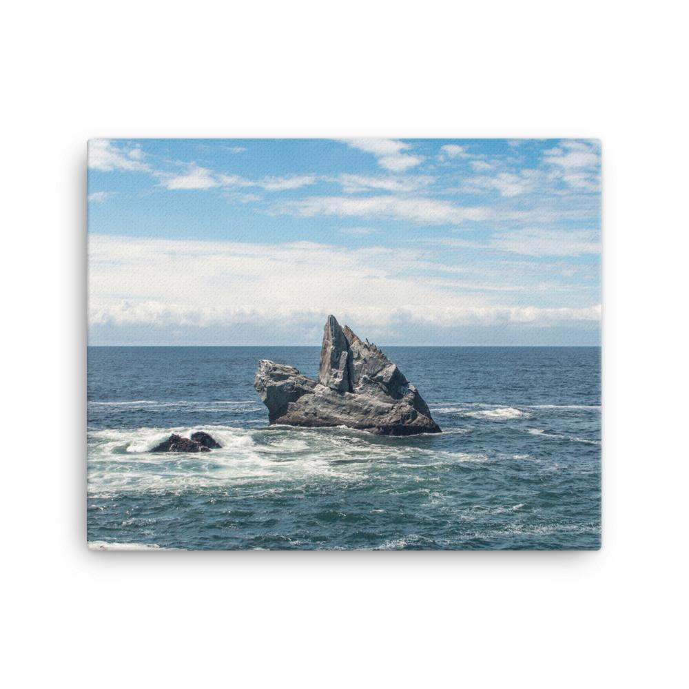 Solitude, California Coast - Canvas Print 16×20 Lost Kat Photography