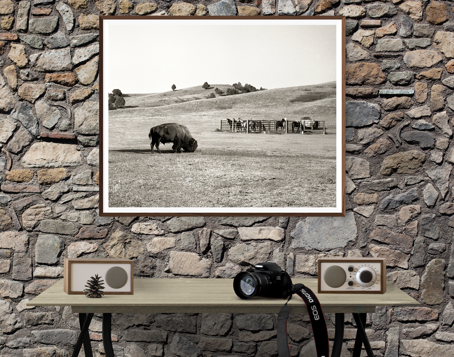 American Bison and Horses, South Dakota Badlands Black and White Art Print