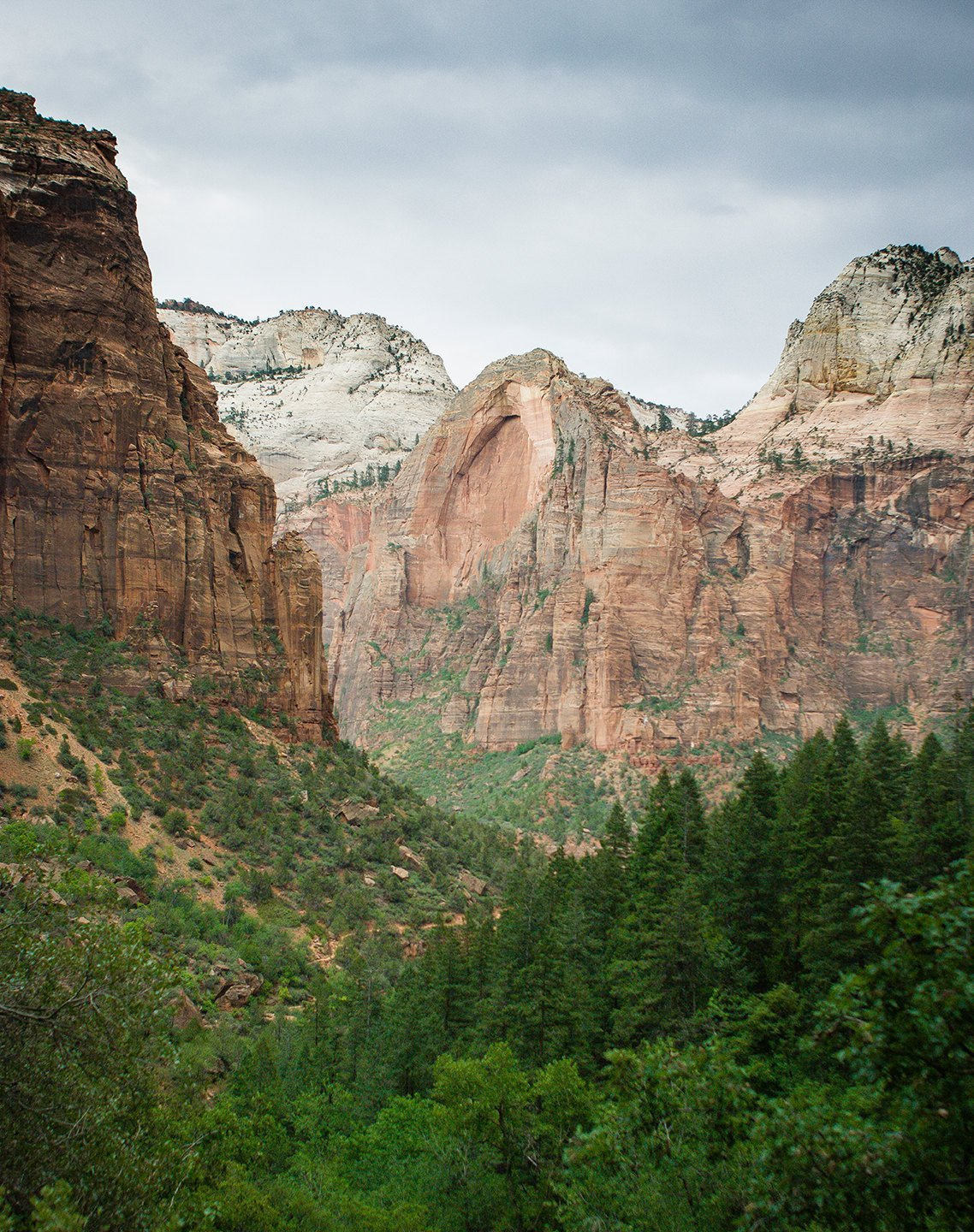 The Virgin River Valley, Zion National Park Utah Lost Kat Photography