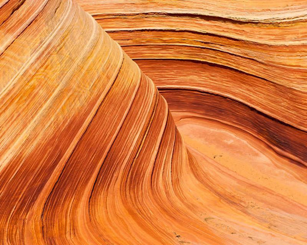 The Wave, Arizona Desert Photography Lost Kat Photography