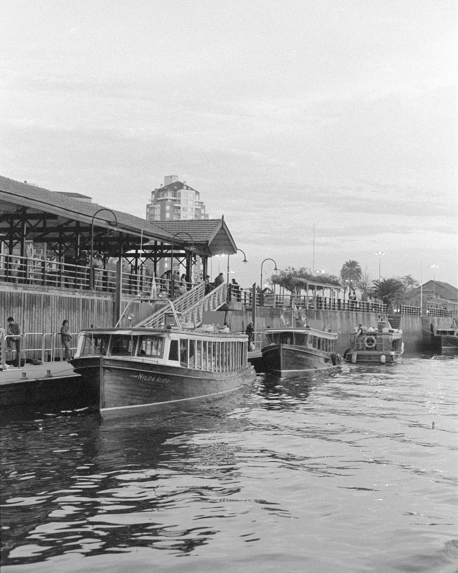 Evening Riverboats Black and White Photographic Print