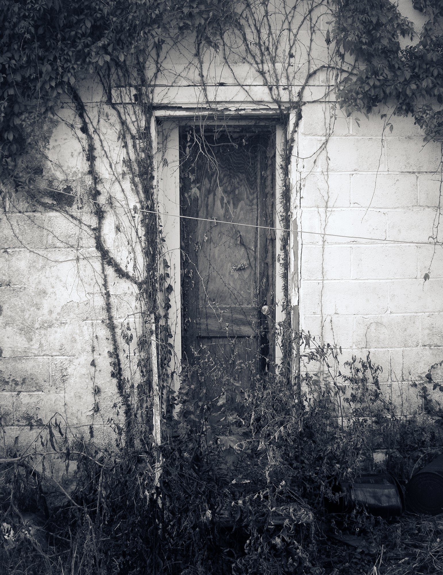 Mysterious Little Door, Black and White Wall Art Print