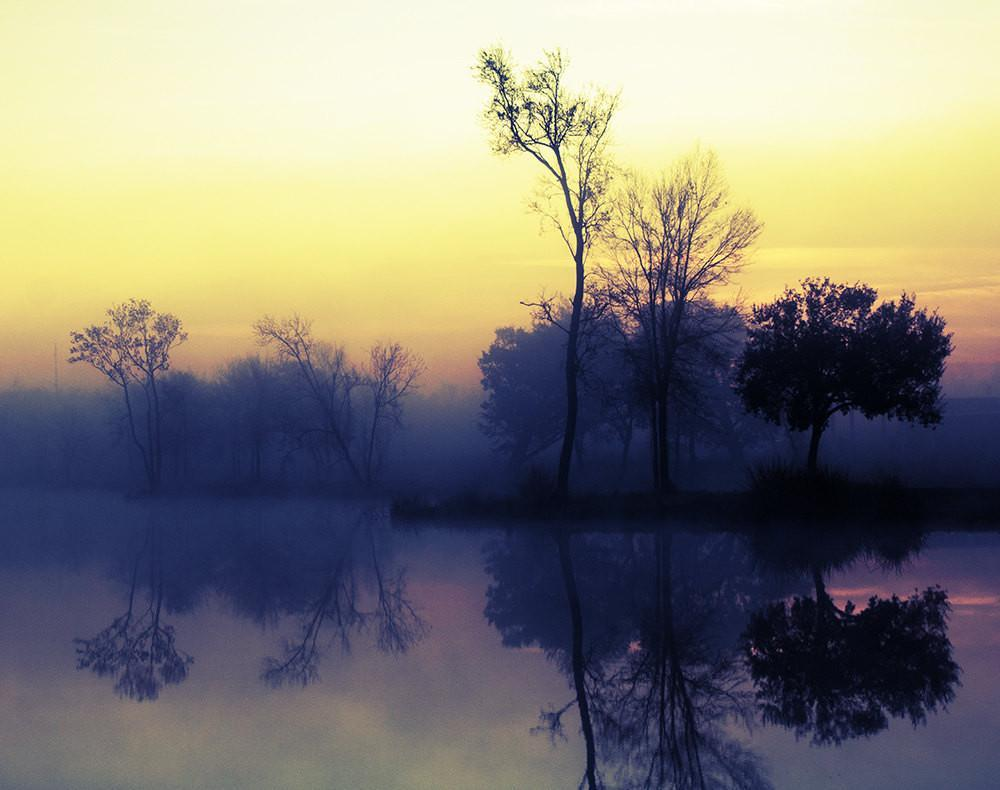 Trees at Sunrise, Lake Reflection, Nature Photography - Fine Art Print Lost Kat Photography