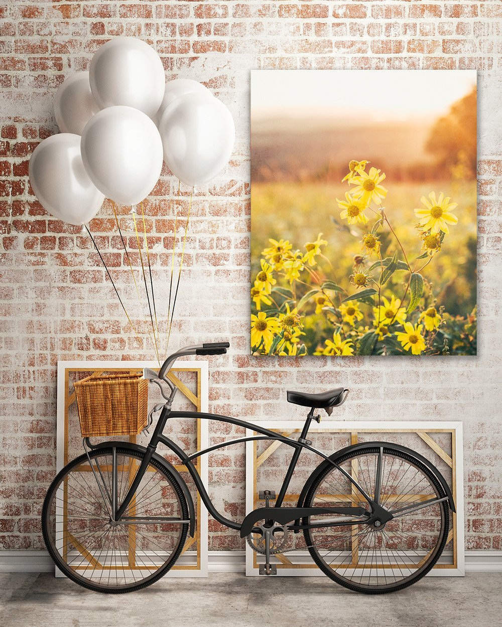 Yellow Aster at Sunset, Colorado - Wall Art Print - Many Sizes ...