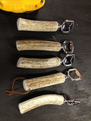 Antler bottle openers