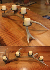 Elk antler candle holder