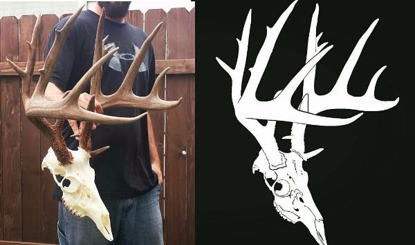 whitetail buck decal