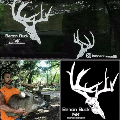 whitetail buck truck decal