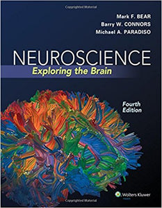 Neuroscience: Exploring the Brain 4th Edition by Mark F. Bear PDF - Books with Benefits