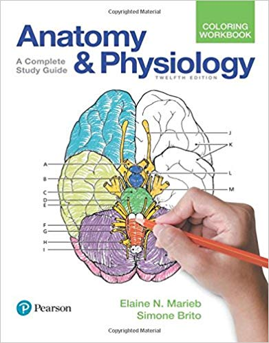 Anatomy and Physiology Coloring Workbook: A Complete Study Guide  12th Edition by Elaine N. Marieb PDF - Books with Benefits