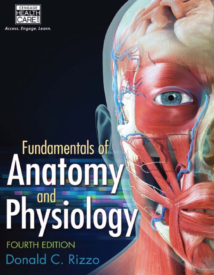Fundamentals of Anatomy and Physiology  4th Edition by Donald C Rizzo PDF