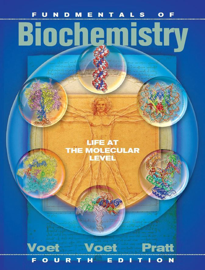 Fundamentals of Biochemistry 4th Edition by Voet PDF