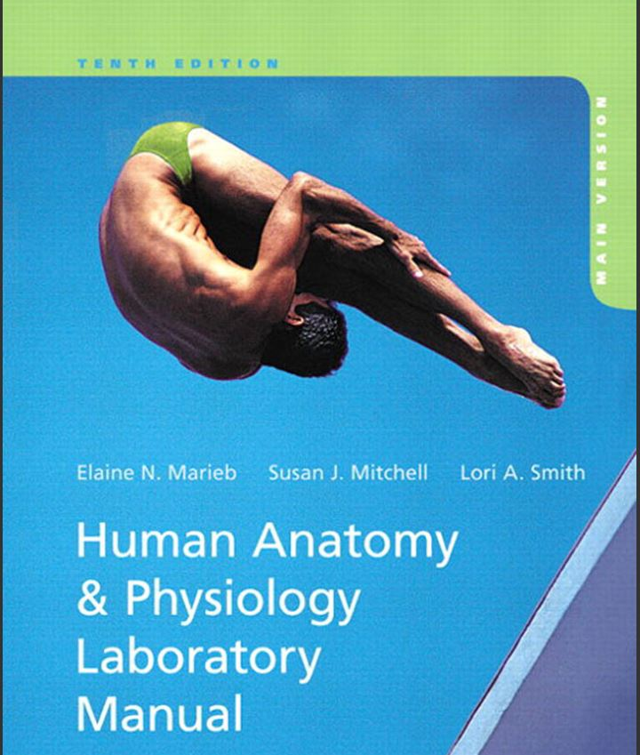 Human Anatomy and Physiology Laboratory Manual 10th Edition by Elaine N. Marieb PDF