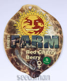 Red Cherry Berry Feminised Seeds - BITCOINSEEDSHOP - 2