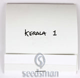 Kerala Regular Seeds - BITCOINSEEDSHOP - 2